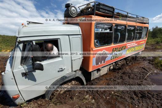 """Фотография: туристический экспедиционный автомобиль высокой проходимости КамАЗ-вахтовка (автофургон), застрявший в грязи на грунтовой лесной дороге в природном парке """"Налычево"""" на полуострове Камчатка"""