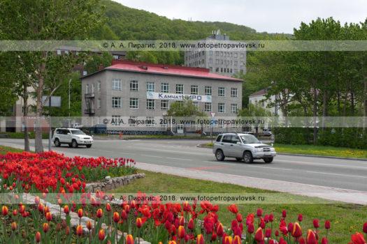 """Фотография здания ФГБНУ """"КамчатНИРО"""" в городе Петропавловске-Камчатском"""