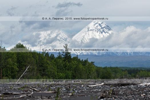 Стратовулкан Камень, Ключевская группа вулканов на полуострове Камчатка