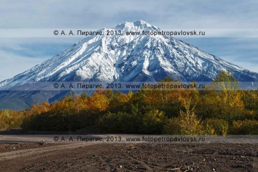 Фотографи: Корякский вулкан, или Корякская сопка, — действующий стратовулкан на полуострове Камчатка