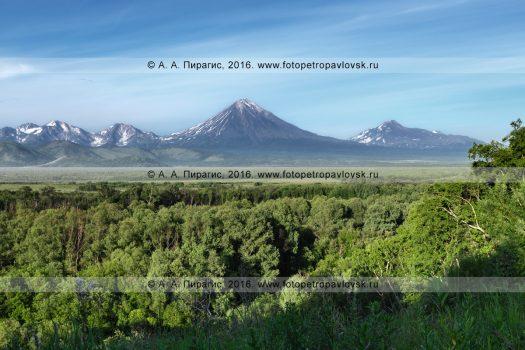 Фотография: Авачинско-Корякская группа вулканов на Камчатке — вулкан Ааг, вулкан Арик, вулкан Корякский, вулкан Авачинский, вулкан Козельский