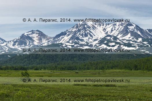 Фотография (панорама): вулкан Корякский, вулкан Арик и вулкан Ааг на Камчатке