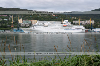 Круизный лайнер Pacific Venus в Петропавловск-Камчатском морском торговом порту
