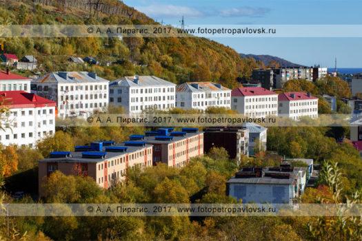 Фотография: Камчатский край, город Петропавловск-Камчатский, улица Океанская