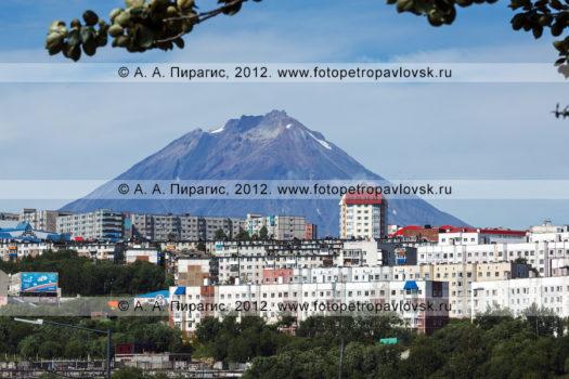 Летние фотографии города Петропавловска-Камчатского