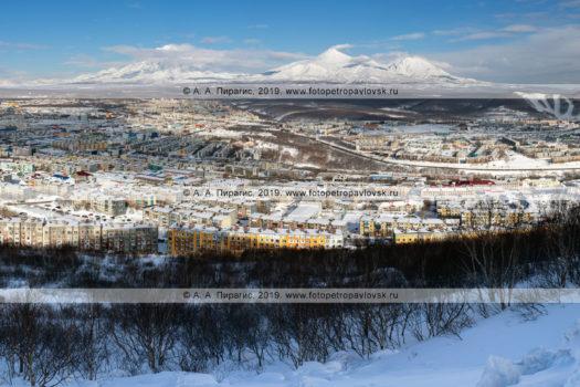Зимняя панорамная фотография города Петропавловска-Камчатского на фоне «домашних» вулканов.