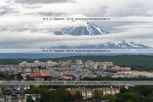Фотография города Петропавловска-Камчатского на фоне Корякского вулкана летом