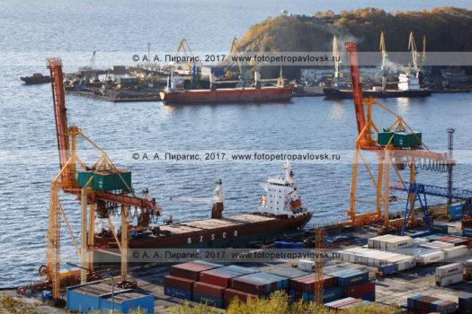 Фотография: Петропавловск-Камчатский морской торговый порт. Полуостров Камчатка, город Петропавловск-Камчатский, Авачинская губа (Авачинская бухта)