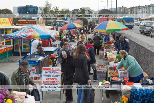 Фоторепортаж со стихийного продовольственного рынка в городе Петропавловске-Камчатском
