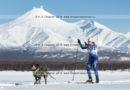 Скиджоринг с собакой (лыжи — спринт). Кубок Камчатского края по ездовому спорту (15 фотографий)