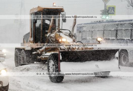 Фотография: снегоуборочная техника — грейдер осуществляет снегоочистку автодороги в городе Петропавловске-Камчатском во время пурги (метели)