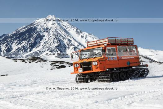 Пассажирский ратрак везет людей на фоне вулкана Корякская сопка на Камчатке