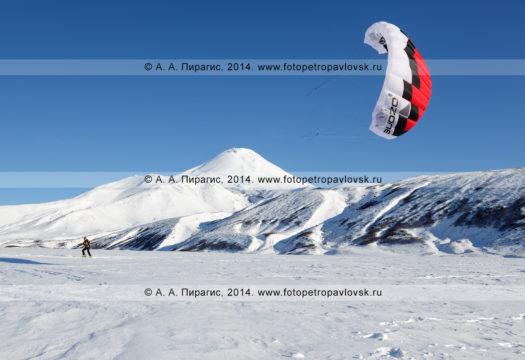 Сноукайтинг (зимний кайтинг, snowkiting) на Камчатке, катание на фоне Авачинского вулкана