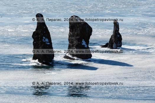 Фотографии скал Три Брата в Авачинской губе (Авачинской бухте) на полуострове Камчатка