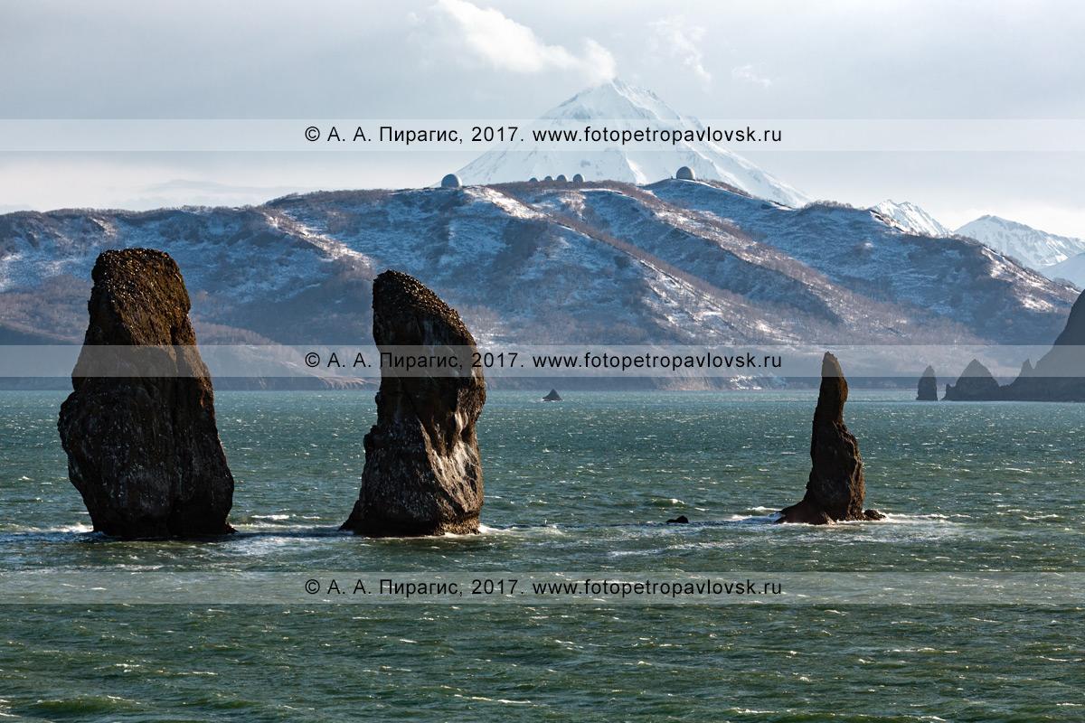 Фотография: морской пейзаж — вечерний вид на скалы Три Брата в Авачинской бухте (Авачинская губа) на полуострове Камчатка
