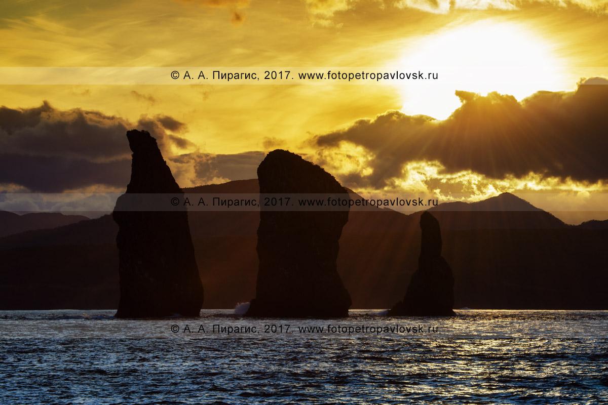 """Фотография: камчатский морской пейзаж — красивый вид на закате солнце на памятник природы Камчатки """"Скалы Три Брата"""" в Авачинской губе (Авачинская бухта)"""