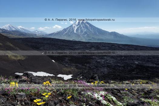 Фотография вулканического пейзажа полуострова Камчатка
