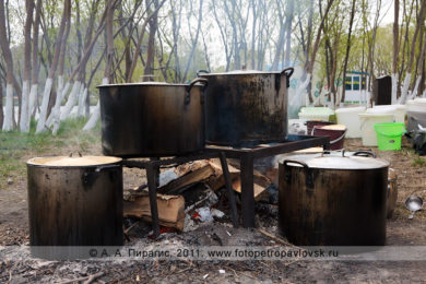 Фотографии приготовления камчатской ухи на День первой рыбы