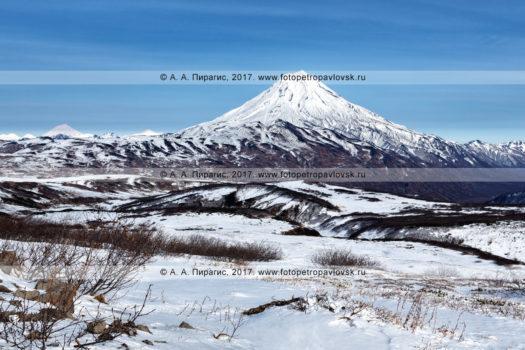 Фотография (панорама): горный пейзаж Камчатки — вулкан Вилючинская сопка (вулкан Вилючинская сопка, Вилючик, Vilyuchinsky Volcano) в снежном наряде