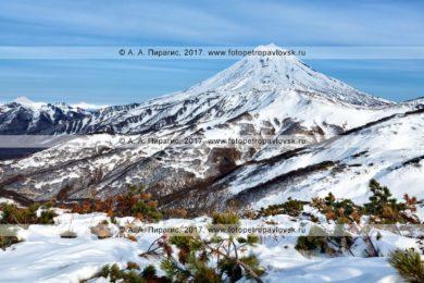 Фотография: зимний горный пейзаж полуострова Камчатка — конус вулкана Вилючинская сопка (Vilyuchinsky Volcano)